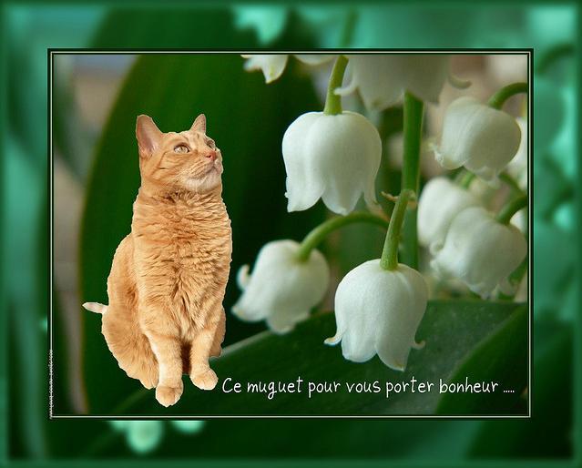 Petit chat chinois porte bonheur muguet